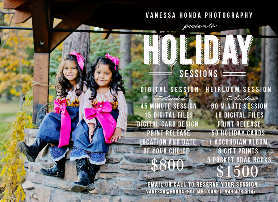 HolidaySession marketing board final darker resized