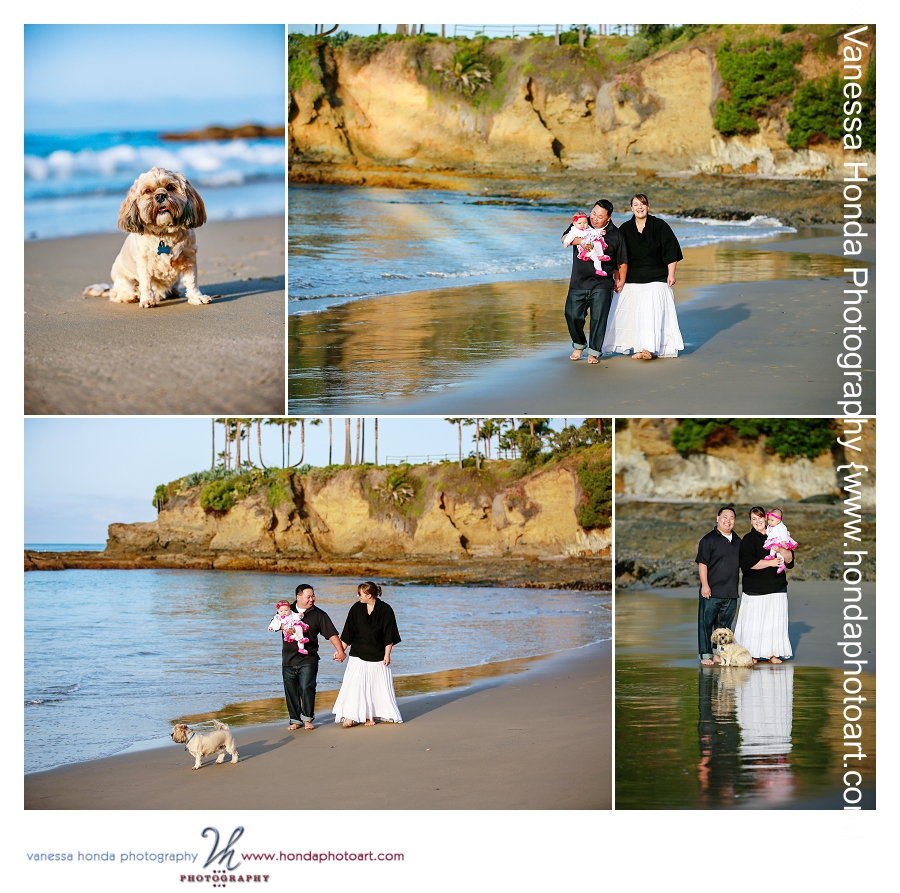 Laguna Beach Family Portraits at Shaw's Cove 5