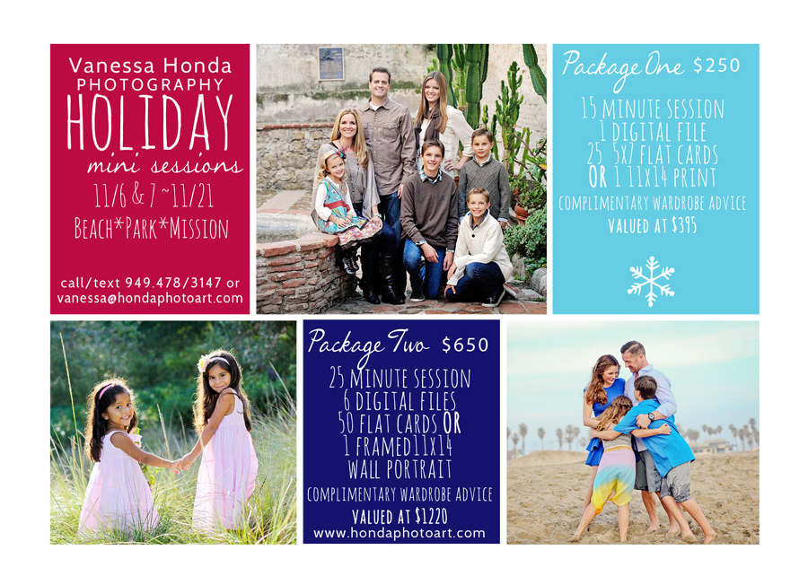 2015 Mini sessions promotion resized