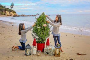 Christmas Beach Mini
